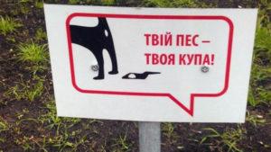Жителька Вишневого пропонує, щоб влада заборонила вигул собак на вулицях